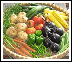 食育インストラクター養成講座の特長3